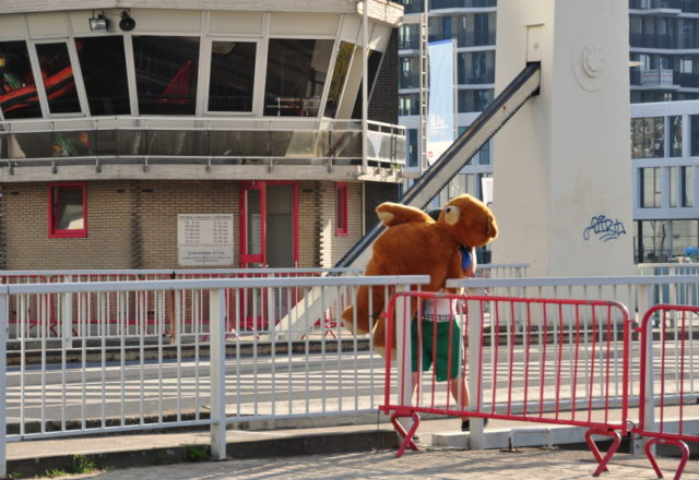 Teddy Bear na Londenbrug w Antwerpii