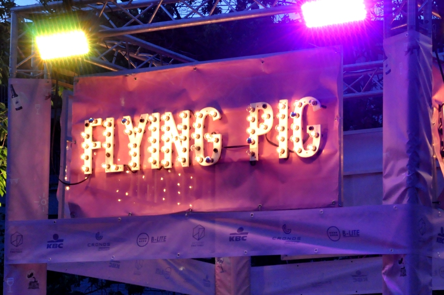 Banner Flying Pig
