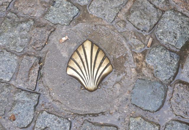 Muszla na szlaku św. Jakuba w Antwerpii