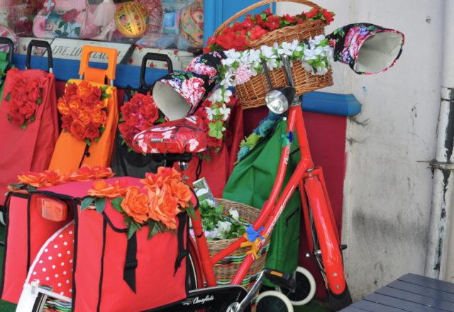 Rower w Antwerpii