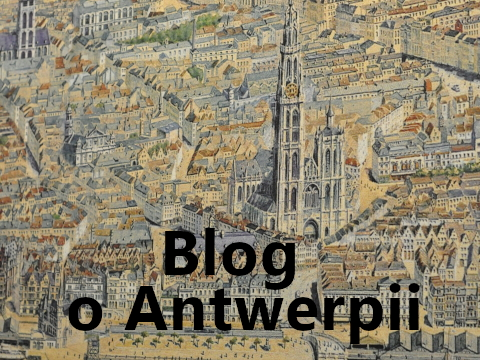 Maculewicz.net - Blog o Antwerpii